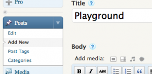 """Open a new post called """"Playground"""""""