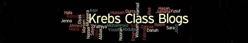 Krebs' Class Blogs